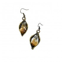 Brass and Citrine Earrings From Brazil